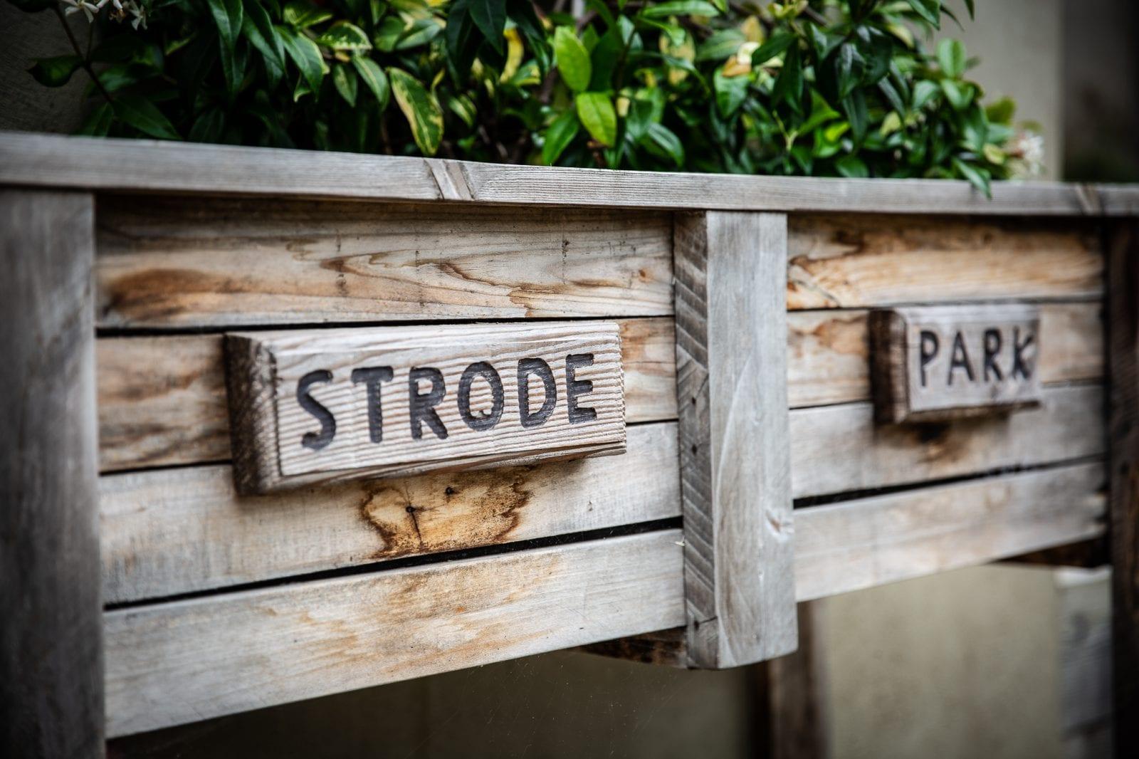 Strode Park planter
