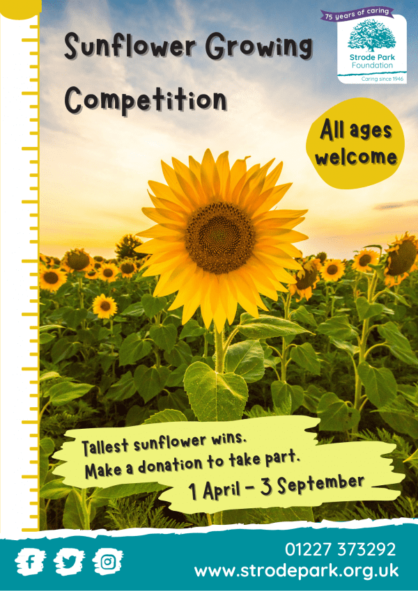 Sunflower Competition poster